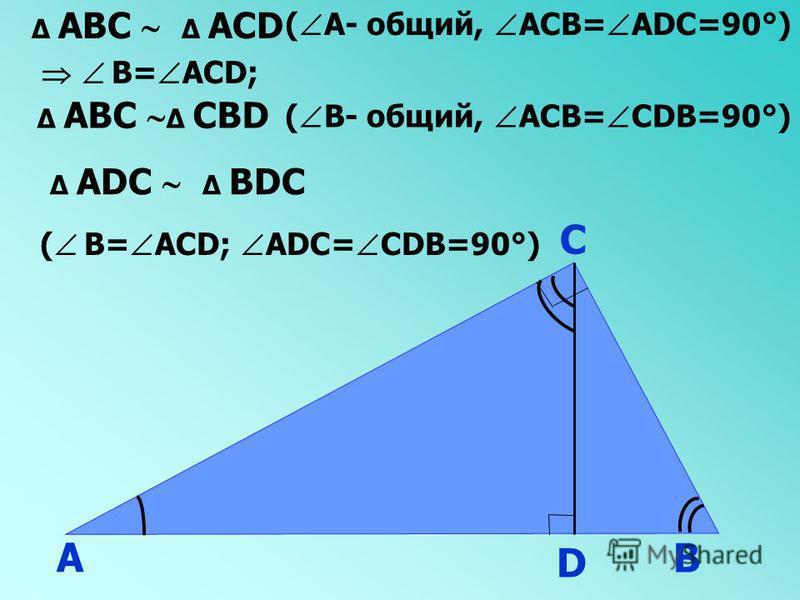 А В С D АВС АСD ( А- общий, АСВ= АDС=90°) В= АСD; АВС СВD ( В- общий, АСВ= СDВ=90°) АDС ВDС ( В= АСD; АDС= СDВ=90°)