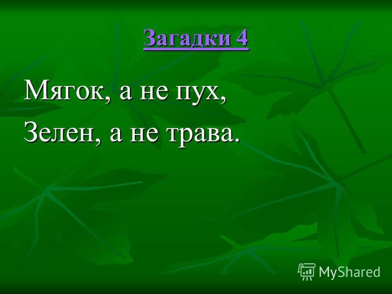 Загадки 4 Загадки 4 Мягок, а не пух, Зелен, а не трава.