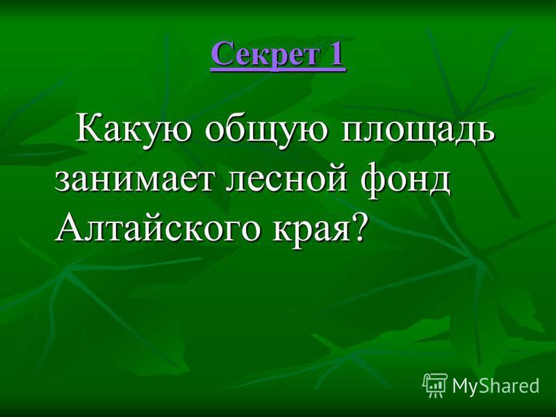 Секрет 1 Секрет 1 Какую общую площадь занимает лесной фонд Алтайского края? Какую общую площадь занимает лесной фонд Алтайского края?