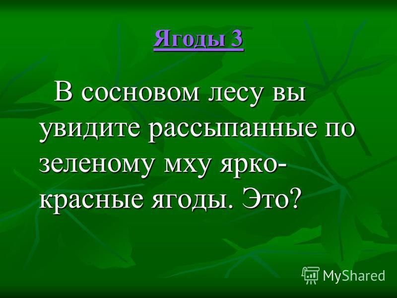 Ягоды 3 Ягоды 3 В сосновом лесу вы увидите рассыпанные по зеленому мху ярко- красные ягоды. Это? В сосновом лесу вы увидите рассыпанные по зеленому мху ярко- красные ягоды. Это?