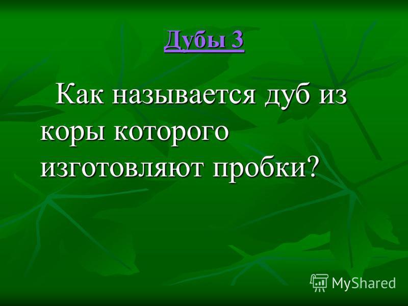 Дубы 3 Дубы 3 Как называется дуб из коры которого изготовляют пробки? Как называется дуб из коры которого изготовляют пробки?