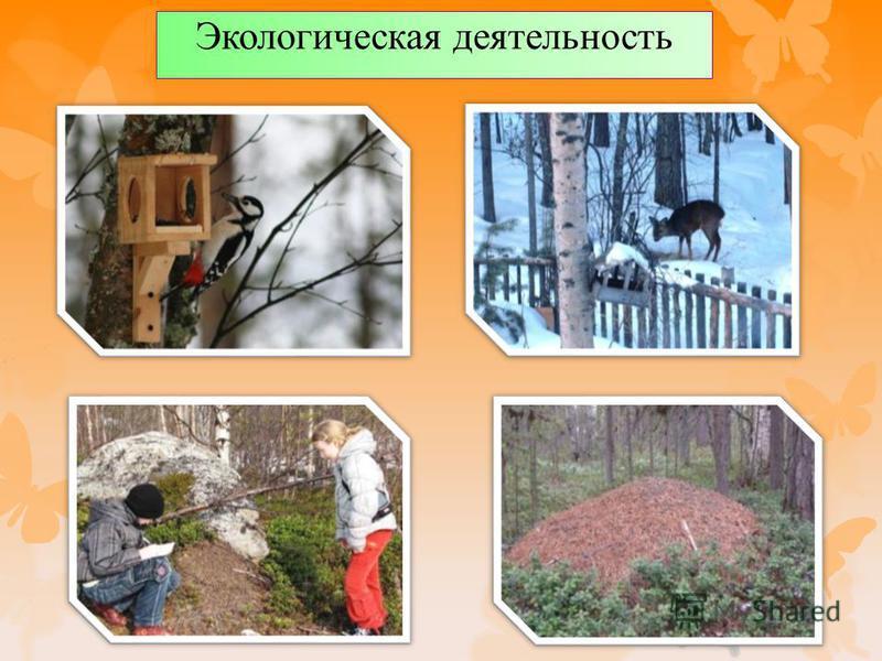 Экологическая деятельность