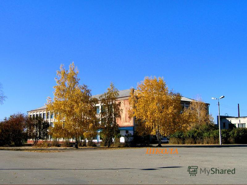 Новичиха знакомства с таджичками в москве