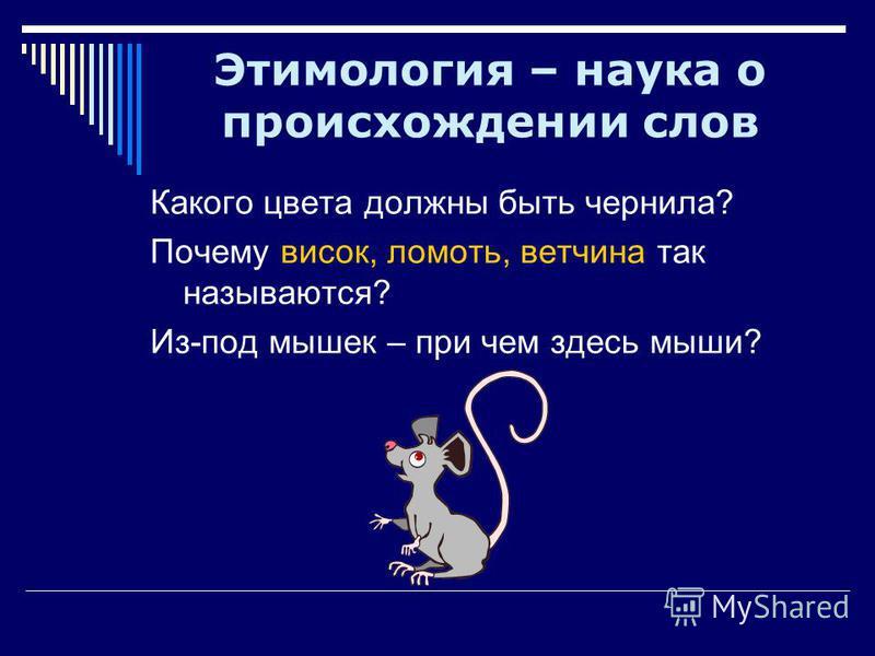 Какого цвета должны быть чернила? Почему висок, ломоть, ветчина так называются? Из-под мышек – при чем здесь мыши? Этимология – наука о происхождении слов