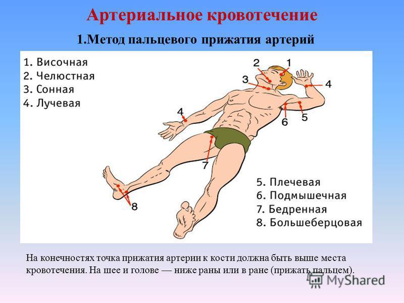 Артериальное кровотечение На конечностях точка прижатия артерии к кости должна быть выше места кровотечения. На шее и голове ниже раны или в ране (прижать пальцем). 1. Метод пальцевого прижатия артерий