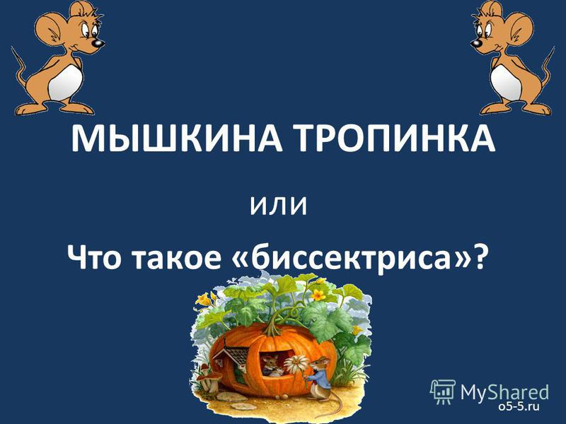 МЫШКИНА ТРОПИНКА или Что такое «биссектриса»? o5-5.ru
