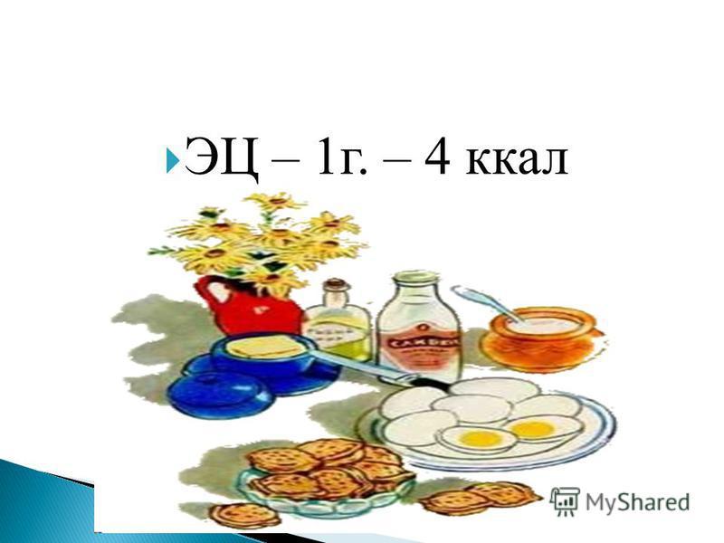 ЭЦ – 1 г. – 4 ккал