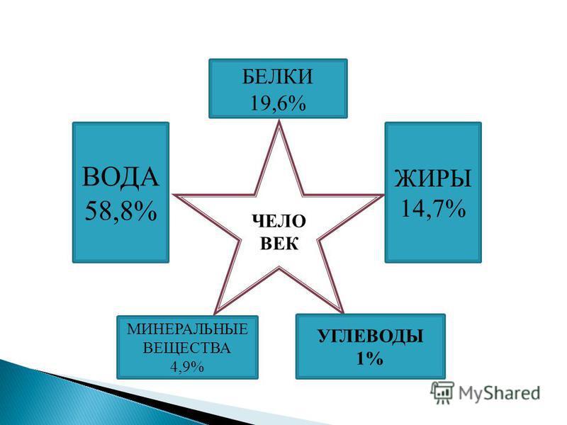 ЧЕЛО ВЕК ВОДА 58,8% МИНЕРАЛЬНЫЕ ВЕЩЕСТВА 4,9% УГЛЕВОДЫ 1% ЖИРЫ 14,7% БЕЛКИ 19,6%