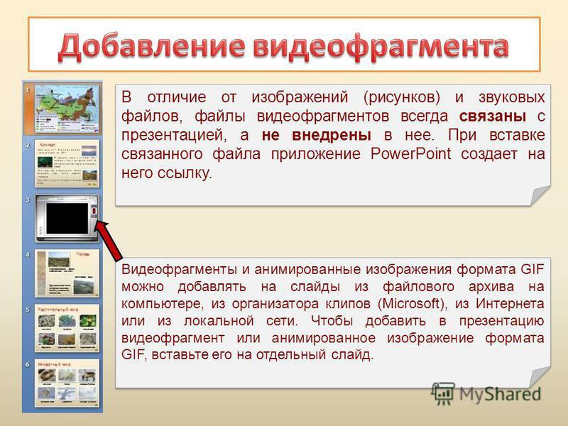 Видеофрагменты и анимированные изображения формата GIF можно добавлять на слайды из файлового архива на компьютере, из организатора клипов (Microsoft), из Интернета или из локальной сети. Чтобы добавить в презентацию видеофрагмент или анимированное и
