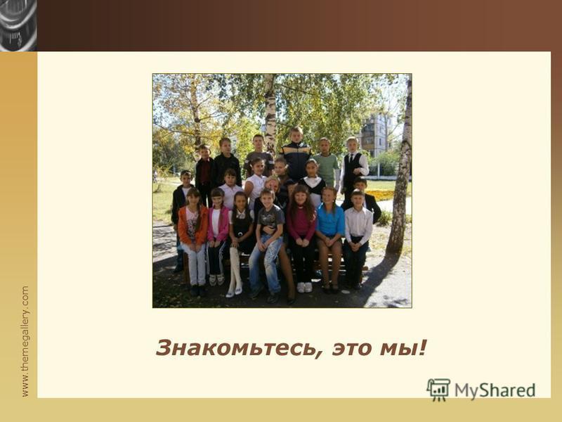 www.themegallery.com Знакомьтесь, это мы!