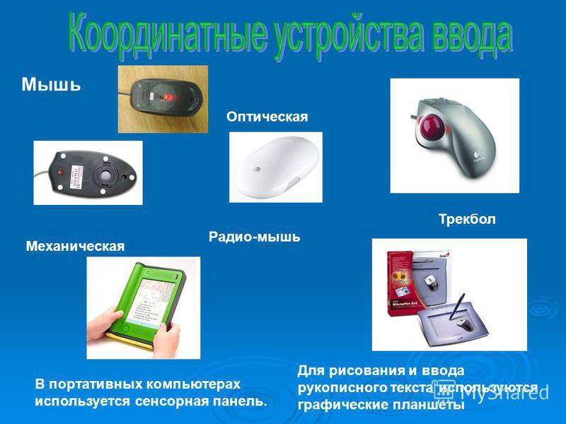 Мышь Трекбол В портативных компьютерах используется сенсорная панель. Для рисования и ввода рукописного текста используются графические планшеты Оптическая Механическая Радио-мышь