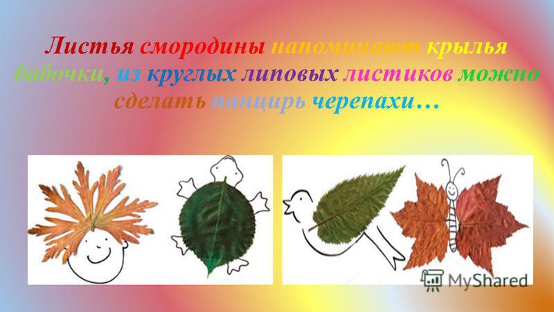 Листья смородины напоминают крылья бабочки, из круглых липовых листиков можно сделать панцирь черепахи…