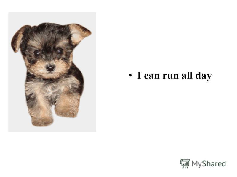 I can run all day