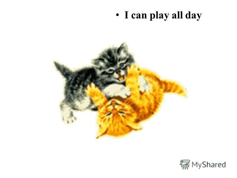 I can play all day