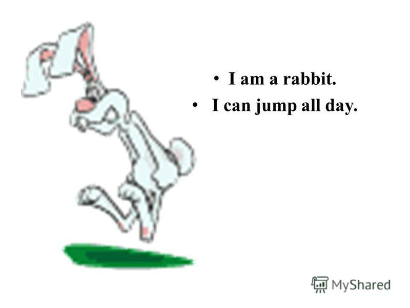 I am a rabbit. I can jump all day.