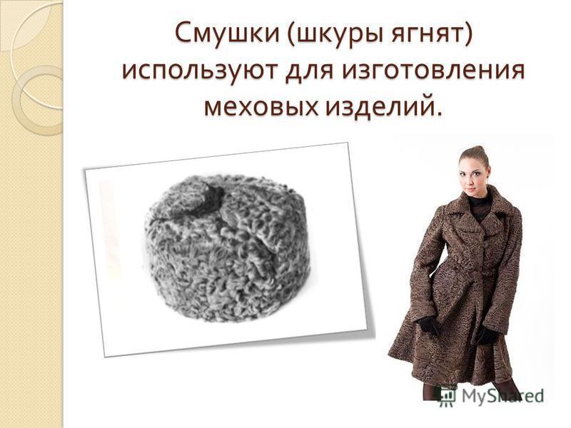 Смушки ( шкуры ягнят ) используют для изготовления меховых изделий.