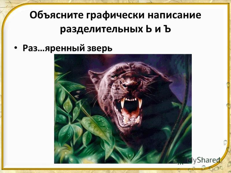 Объясните графически написание разделительных Ь и Ъ Раз…яренновый зверь