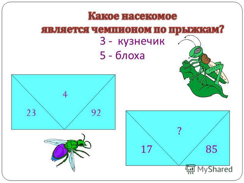 3 - кузнечик 5 - блоха 4 2392 4 2392 4 2392 ? 1785