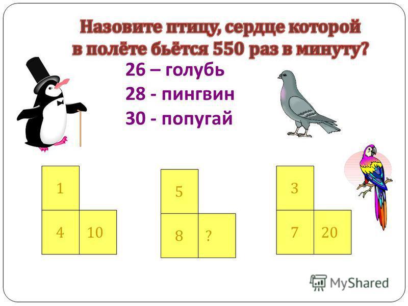 26 – голубь 28 - пингвин 30 - попугай 1 410 5 8? 3 720