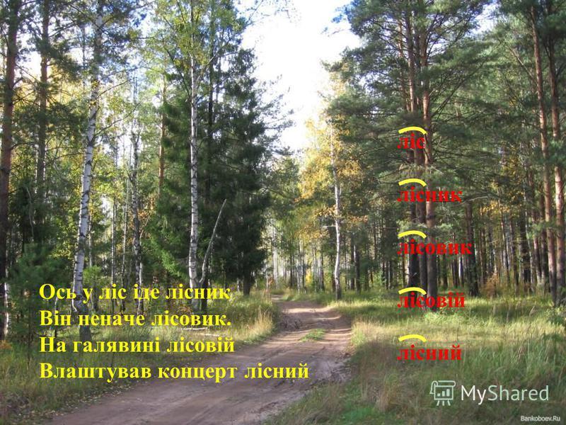 Ось у ліс іде лісник Він неначе лісовик. На галявині лісовій Влаштував концерт лісний ліс лісник лісовик лісовій лісний
