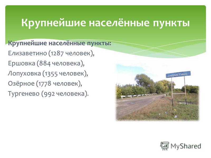 Крупнейшие населённые пункты: Елизаветино (1287 человек), Ершовка (884 человека), Лопуховка (1355 человек), Озёрное (1778 человек), Тургенево (992 человека). Крупнейшие населённые пункты