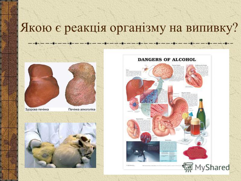 Якою є реакція організму на випивку?