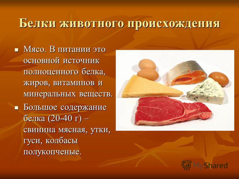 Белки животного происхождения Мясо. В питании это основной источник полноценного белка, жиров, витаминов и минеральных веществ. Мясо. В питании это основной источник полноценного белка, жиров, витаминов и минеральных веществ. Большое содержание белка