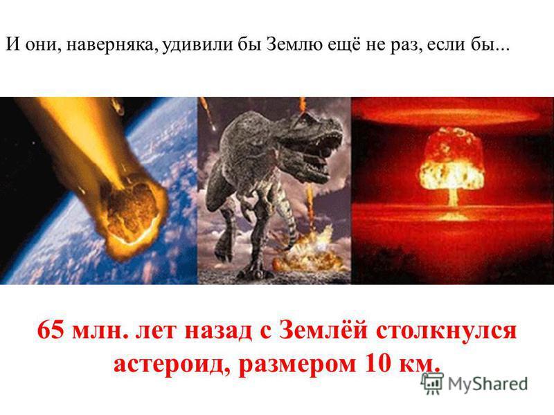 И они, наверняка, удивили бы Землю ещё не раз, если бы... 65 млн. лет назад с Землёй столкнулся астероид, размером 10 км.
