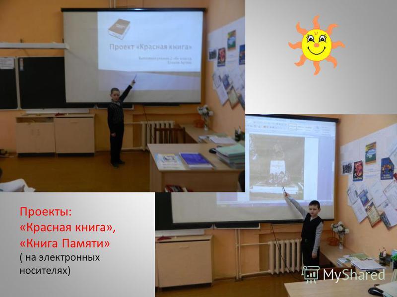 Проекты: «Красная книга», «Книга Памяти» ( на электронных носителях)