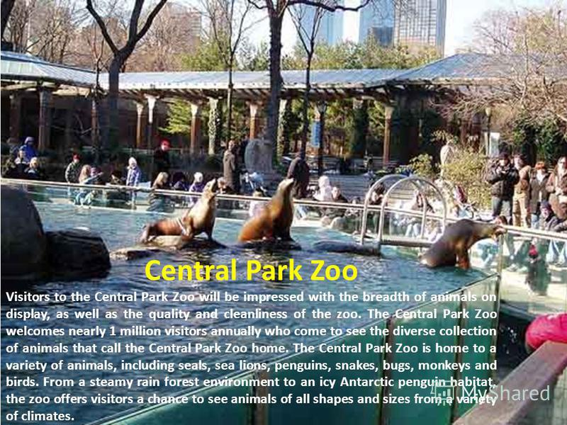 Central Park Zoo Visitors to the Central Park Zoo will be impressed with the breadth of animals on display, as well as the quality and cleanliness of the zoo. The Central Park Zoo welcomes nearly 1 million visitors annually who come to see the divers