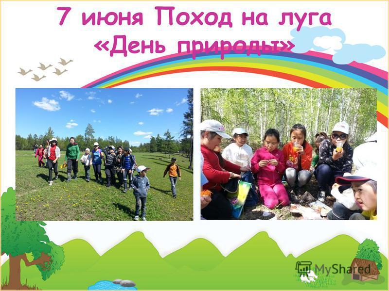 7 июня Поход на луга «День природы»