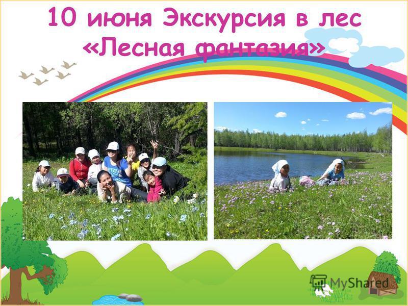 10 июня Экскурсия в лес «Лесная фантазия»