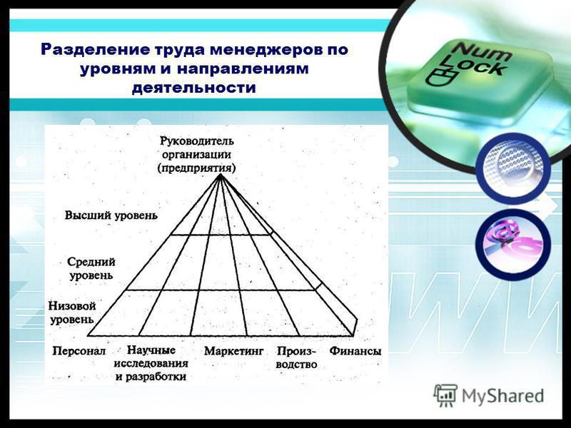 Разделение труда менеджеров по уровням и направлениям деятельности