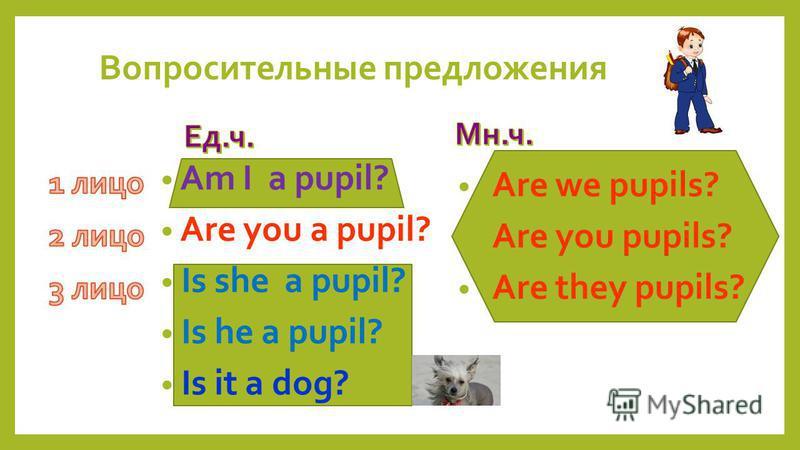 Are we pupils? Are you pupils? Are they pupils? Am I a pupil? Are you a pupil? Is she a pupil? Is he a pupil? Is it a dog? Вопросительные предложения