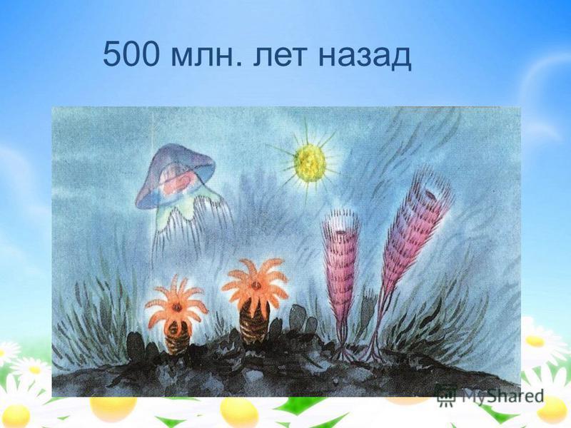 500 млн. лет назад