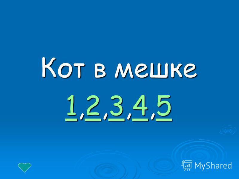 Кот в мешке 11,2,3,4,5 2345 12345