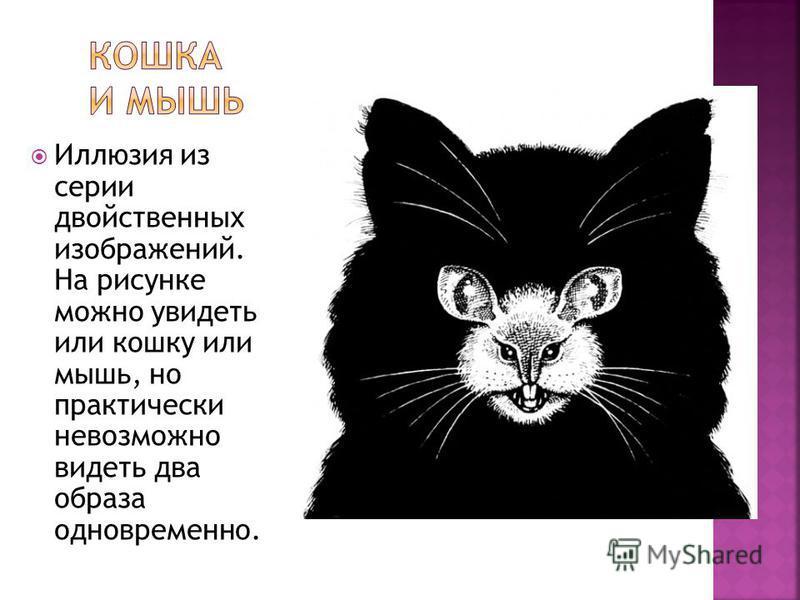Иллюзия из серии двойственных изображений. На рисунке можно увидеть или кошку или мышь, но практически невозможно видеть два образа одновременно.