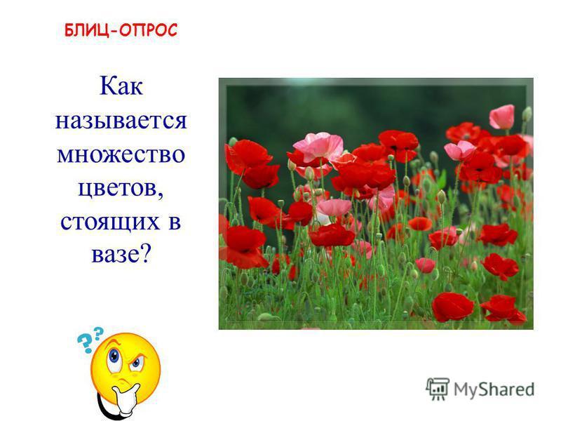 БЛИЦ-ОПРОС букет Как называется множество цветов, стоящих в вазе?