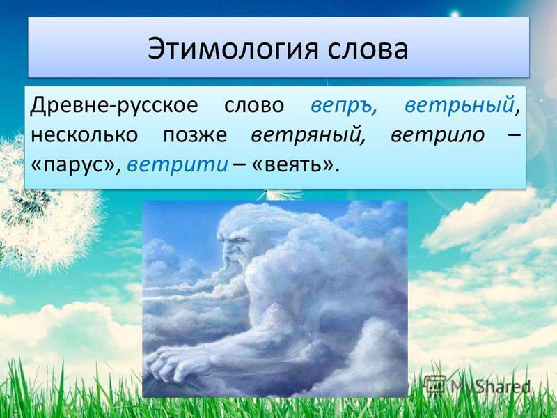 Этимология слова Древне-русское слово вепрь, ветрьный, несколько позже ветряный, ветрило – «парус», вертите – «веять».