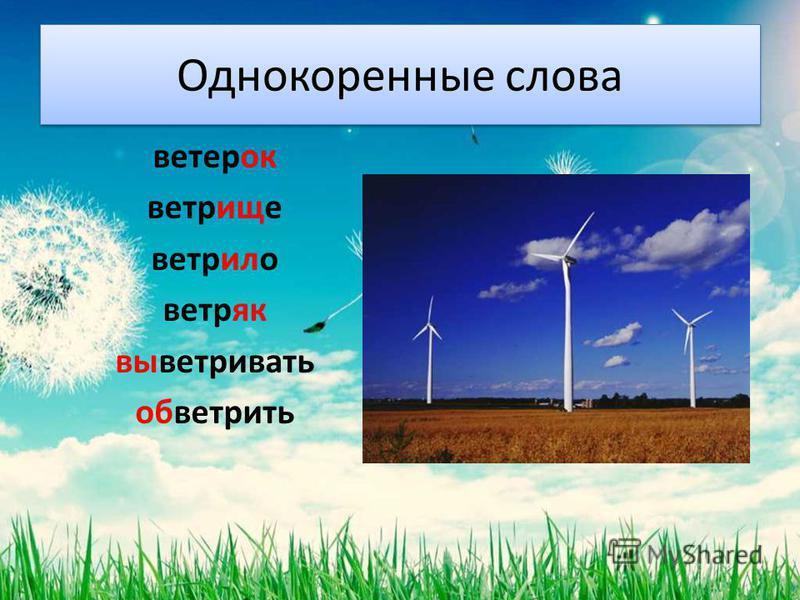 Однокоренные слова ветерок ветрище ветрило ветряк выветривать обветрить