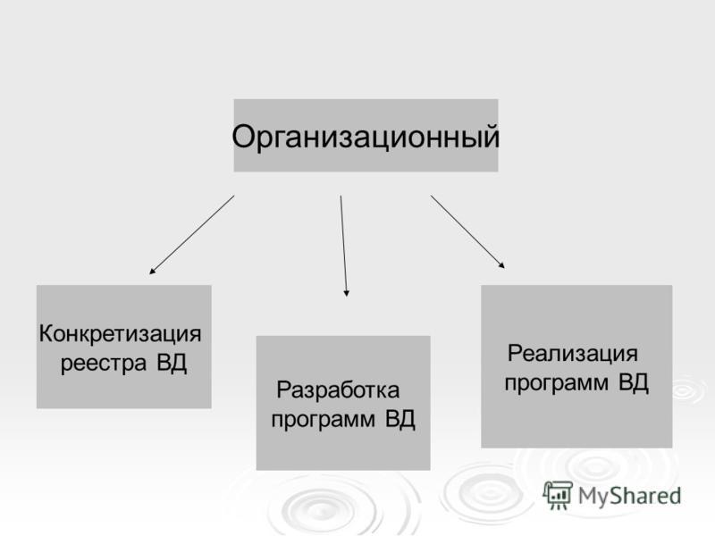 Организационный Конкретизация реестра ВД Разработка программ ВД Реализация программ ВД