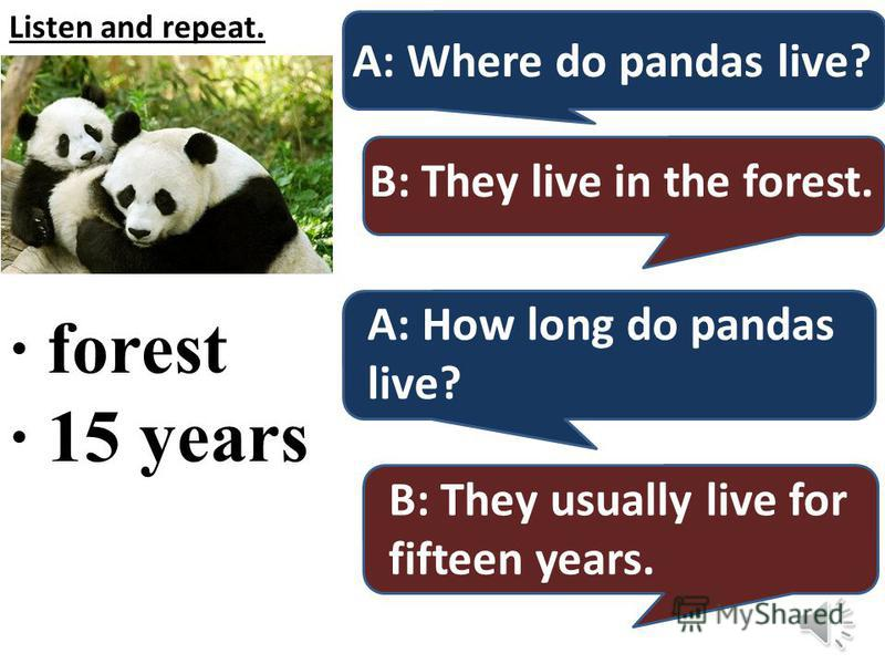 Listen and repeat. · forest · 15 years A: Where do pandas live? B: They live in the forest. A: How long do pandas live? B: They usually live for fifteen years.