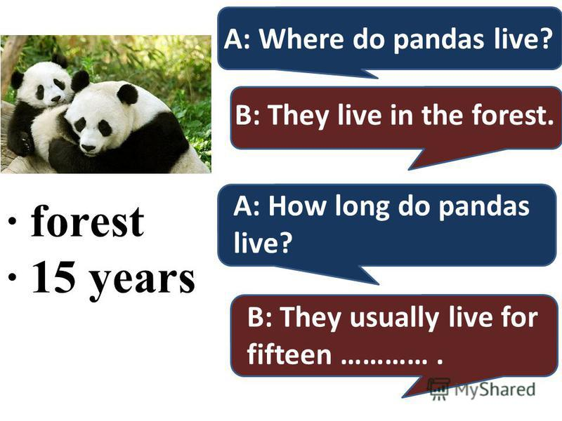 · forest · 15 years A: Where do pandas live? B: They live in the forest. A: How long do pandas live? B: They usually live for fifteen ………….