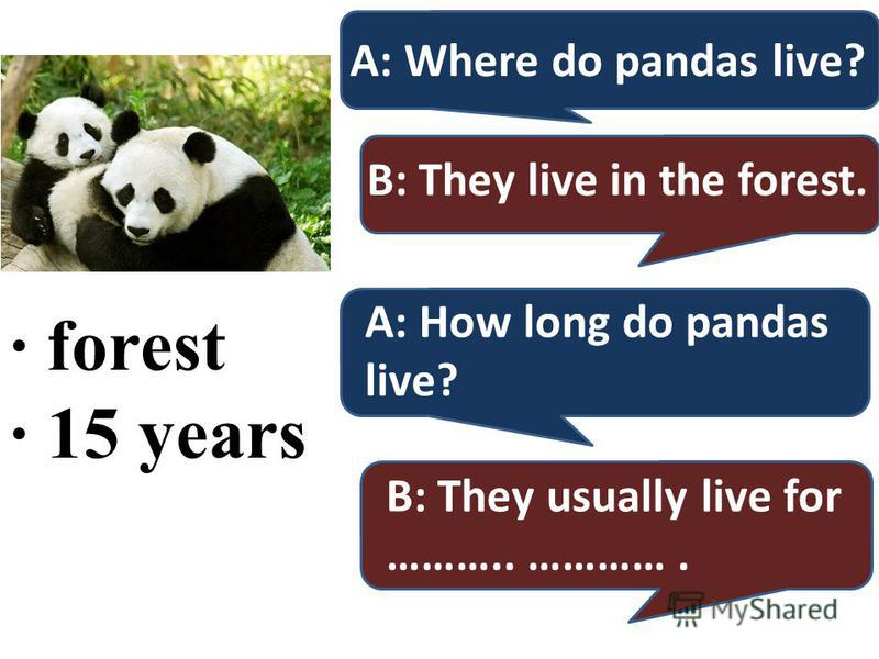 · forest · 15 years A: Where do pandas live? B: They live in the forest. A: How long do pandas live? B: They usually live for ……….. ………….