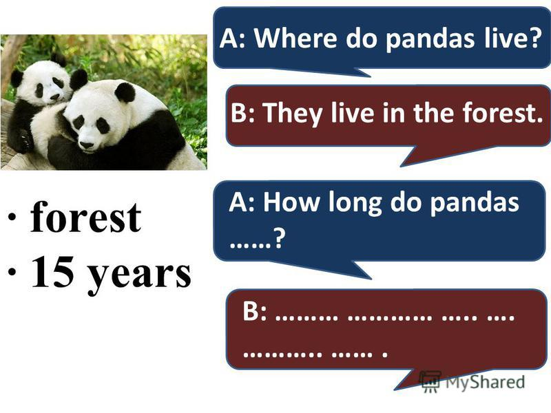· forest · 15 years A: Where do pandas live? B: They live in the forest. A: How long do pandas ……? B: ……… ………… ….. …. ……….. …….