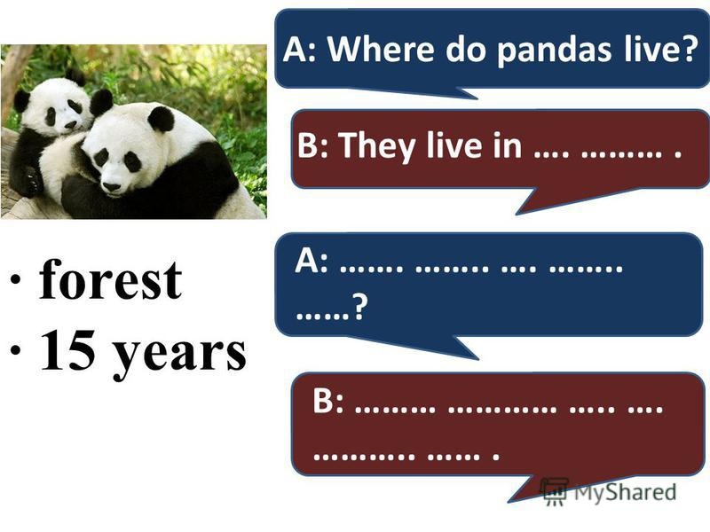 · forest · 15 years A: Where do pandas live? B: They live in …. ………. A: ……. …….. …. …….. ……? B: ……… ………… ….. …. ……….. …….