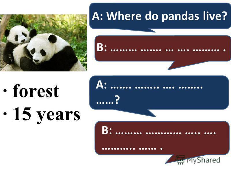 · forest · 15 years A: Where do pandas live? B: ……… ……. … …. ………. A: ……. …….. …. …….. ……? B: ……… ………… ….. …. ……….. …….
