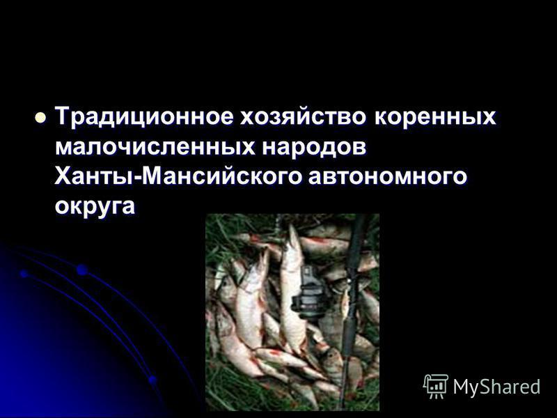 Традиционное хозяйство коренных малочисленных народов Ханты-Мансийского автономного округа Традиционное хозяйство коренных малочисленных народов Ханты-Мансийского автономного округа