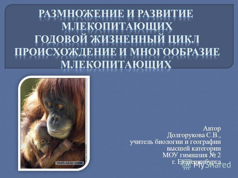 Автор Долгорукова С.В., учитель биологии и географии высшей категории МОУ гимназия 2 г. Екатеринбурга