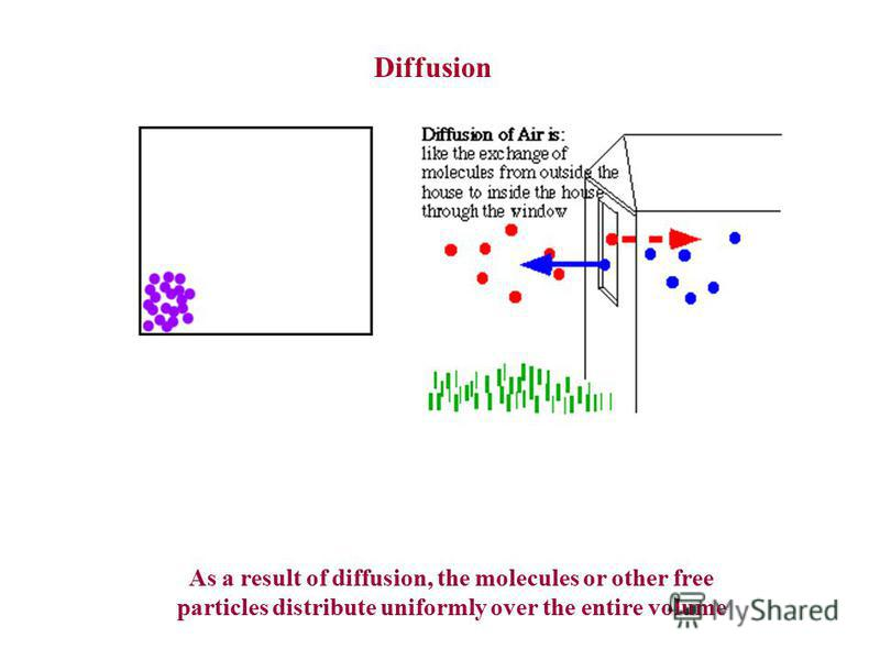 Diffusion As a result of diffusion, the molecules or other free particles distribute uniformly over the entire volume